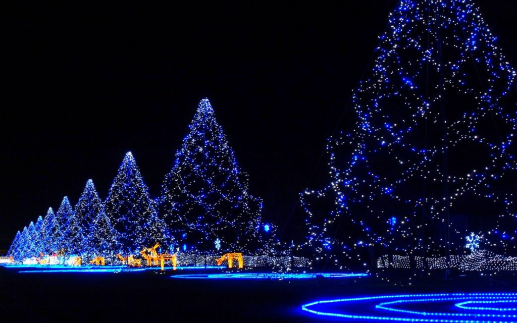 christmas-lights-for-decoration